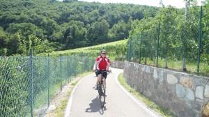 2. op weg naar Montigglersee via sudtiroler wienstrasse
