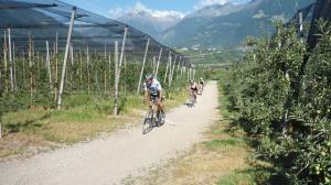 6. fietspad naar Schenna